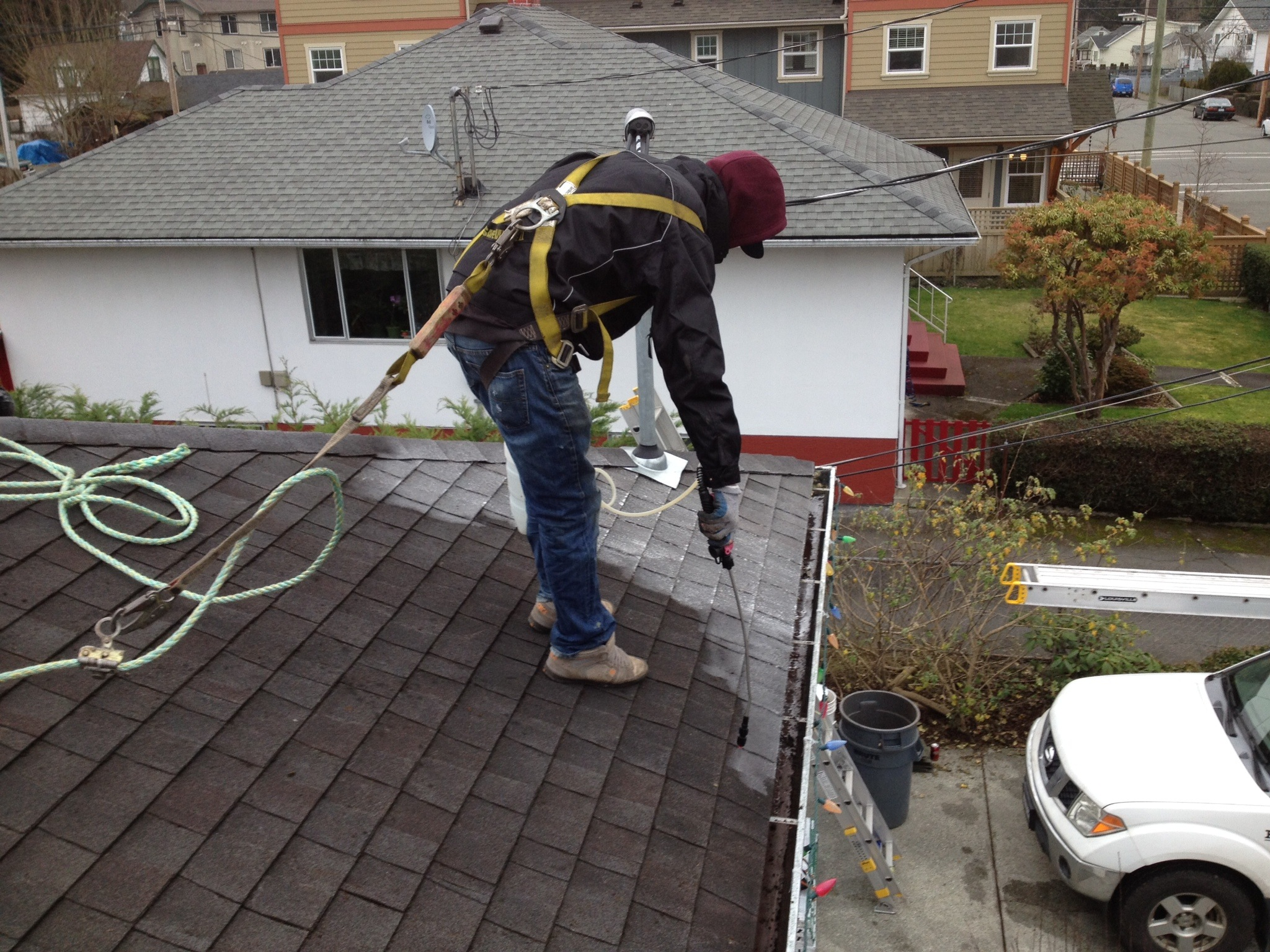 Eco Friendly Moss Removal High Definition Roofing Ltd
